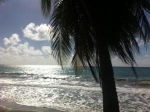 I 10 luoghi in cui fermarsi a Martinica
