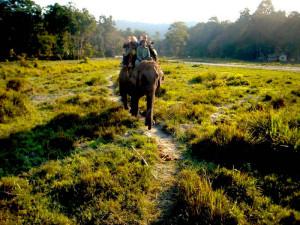 Parco di Chitwan: 10 scoperte di una cittadina nella giungla del Nepal