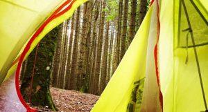 1 notte di campeggio libero nel bosco, 12 kg di zaino e 10 pensieri…