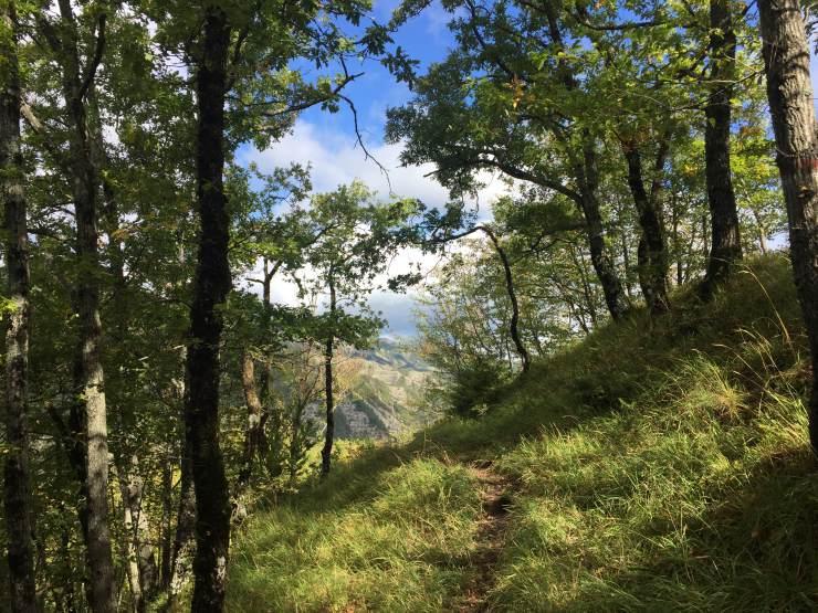 Percorso verso Monte Pozzone (di Fringeintravel)