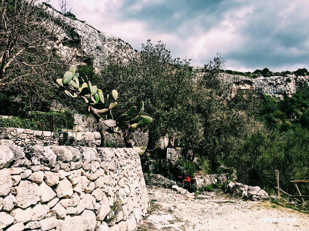 Cammini francescani in sicilia