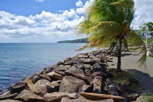 Martinica 3