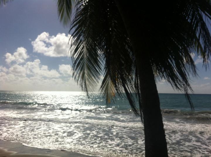 martinica spiaggia
