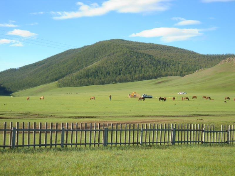 mongolia trekking cavallo2