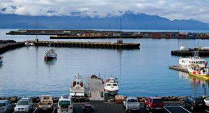 Avvistare le balene in Islanda a Husavik: ma chi me l'ha fatto fare?