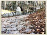 Via di Francesco tappa 1: da La Verna a Pieve Santo Stefano