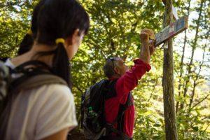 organizzare il cammino di san francesco fringeintravel