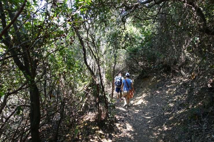 trekking toscana piombino promontorio88