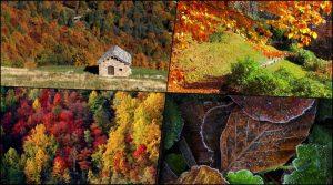 Dove andare a vedere il foliage? Vi presento l'Oasi Zegna