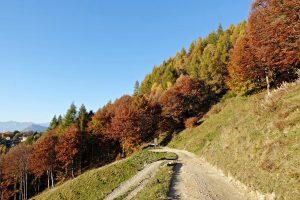 Trekking vicino Milano: l'escursione dei Rifugi, dal Disolin al Santa Rita