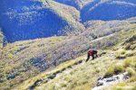 monte cucco trekking1