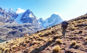 Trekking responsabile: 10 regole per non danneggiare l'ambiente