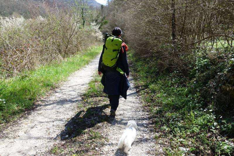 organizzare cammino san benedetto