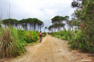 Parco di San Rossore in Toscana: come visitarlo?