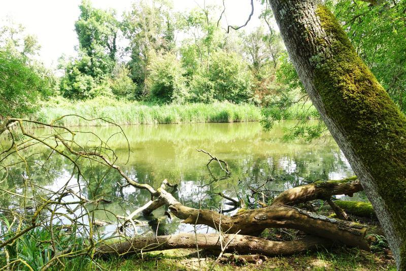 Toscana outdoor parco