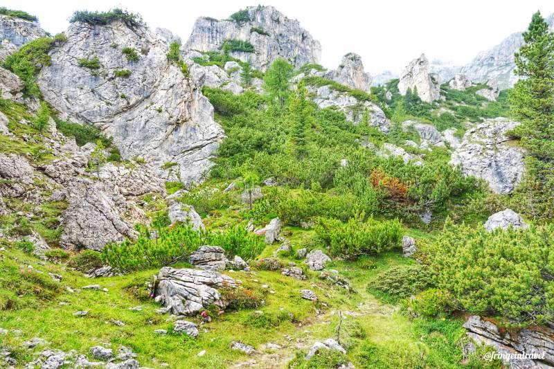 Escursione bec de roces da campolongo