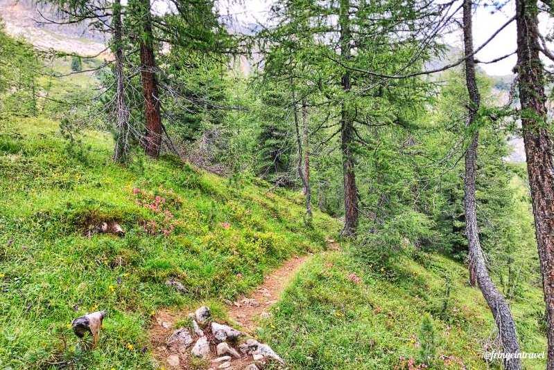 Escursione bec de roces