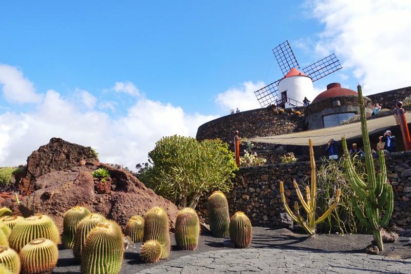 viaggio economico per l autunno-Lanzarote mulino