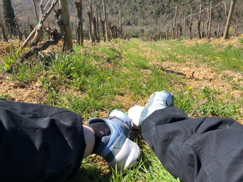 scarpe da trekking e montagna cv45
