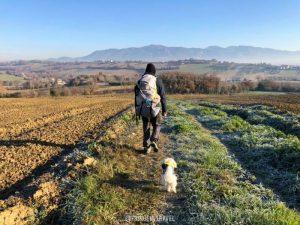 Cammino dei protomartiri francescani4