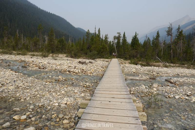 Iceline Trail Top Trekking in Canada2