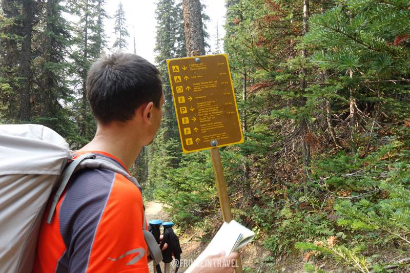 Iceline Trail Top Trekking in Canada6