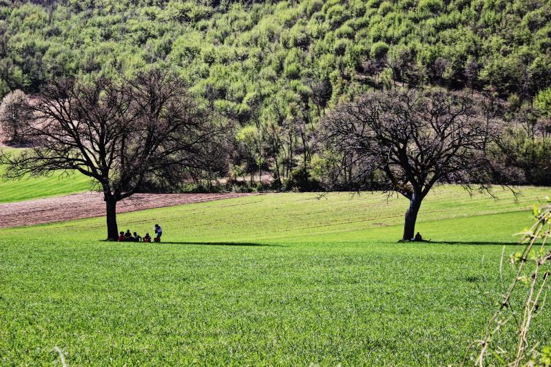 paesaggio verde cammino San Benedetto
