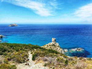 Sentiero dei Doganieri la torre Cap Corse
