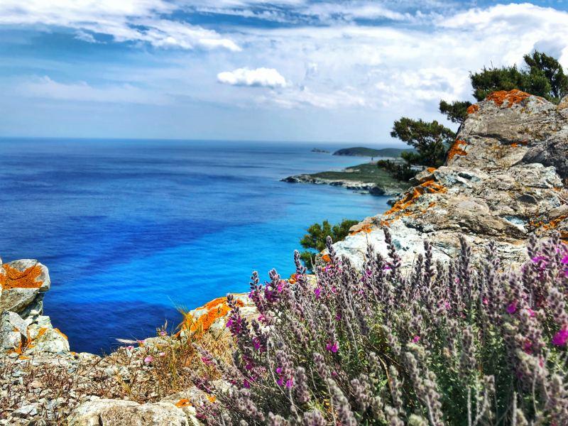 Paesaggio con lavanda Sentiero dei Doganieri 7