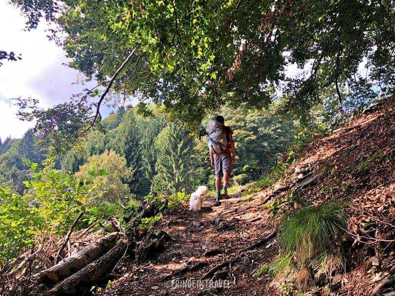 Bosco trekking valle di ledro