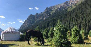 Kirghizistan yurte con cavallo