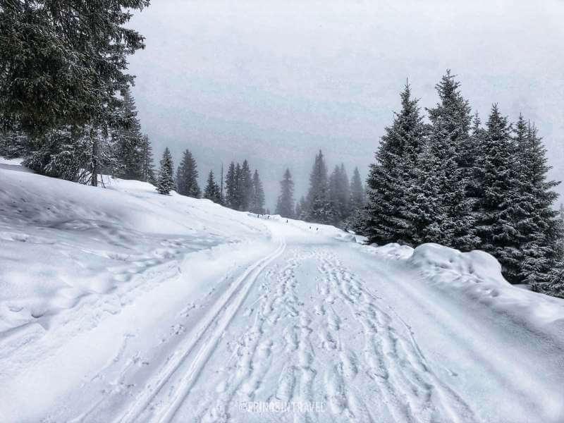 Malga calice Racines escursione invernale