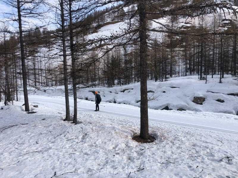 sci di fondo in Val Troncea