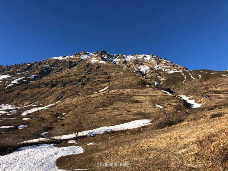 parco-Naturale-Orsiera-Rocciavre-bosco-333
