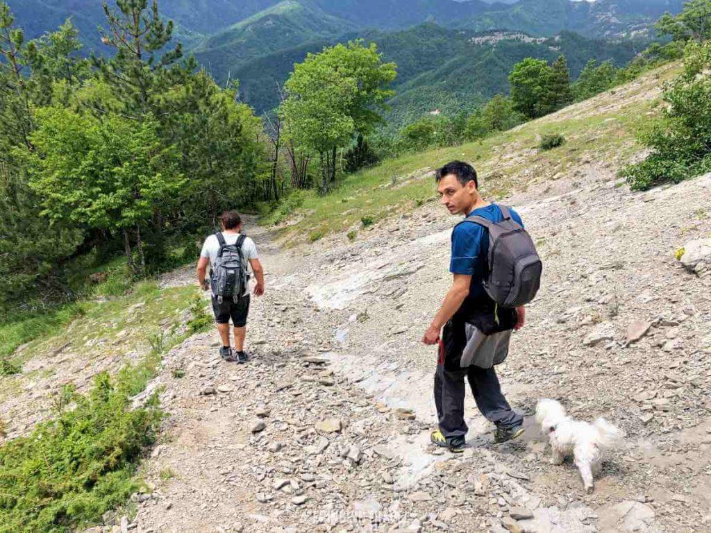 Diga Ridracoli percorso escursione3
