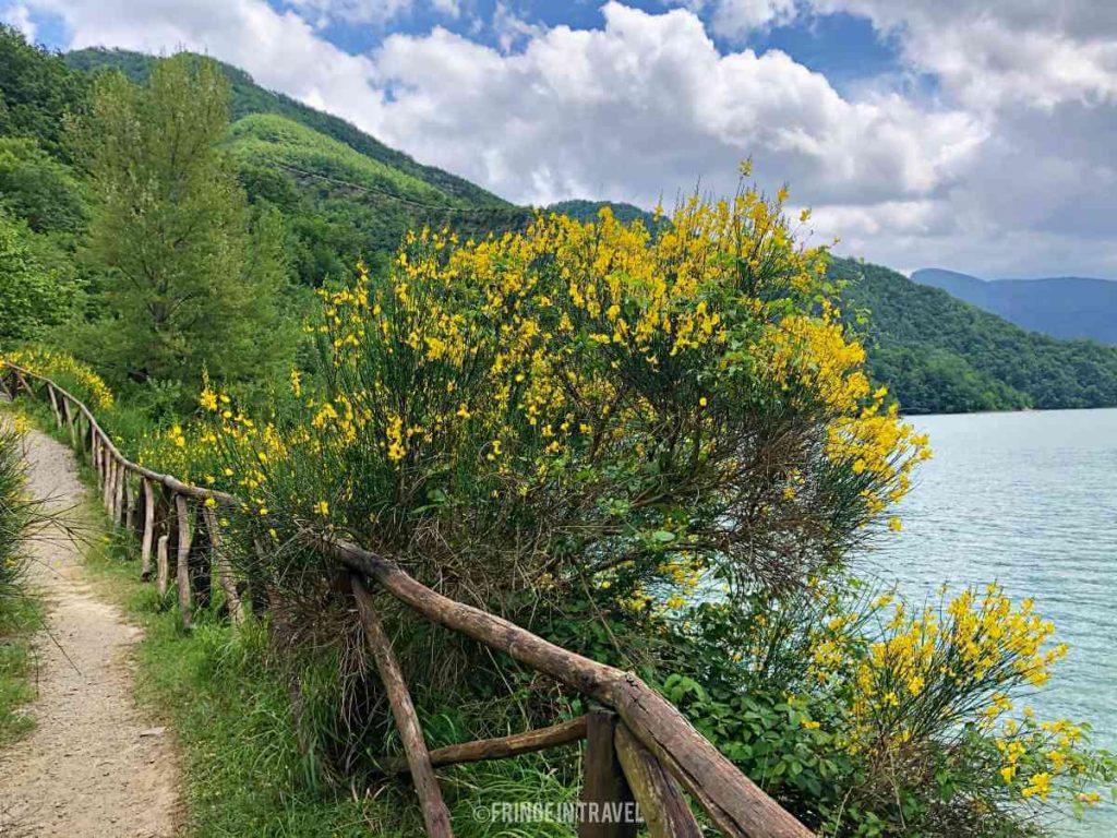 Diga Ridracoli9 lungo lago