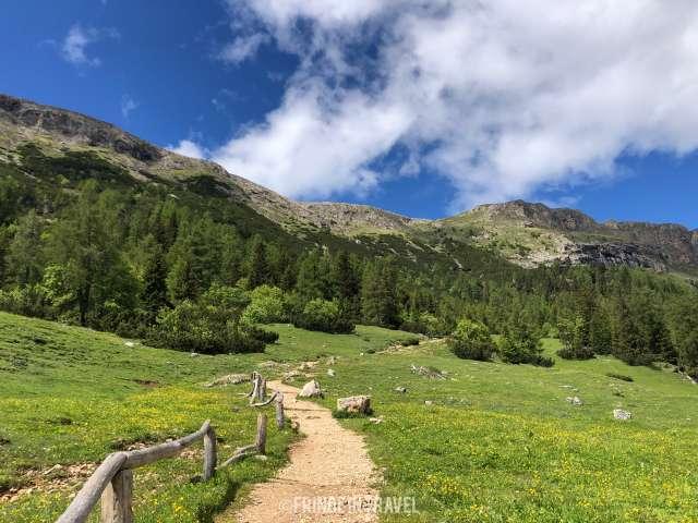 Percorso CAI verso Rifugio Bolzano