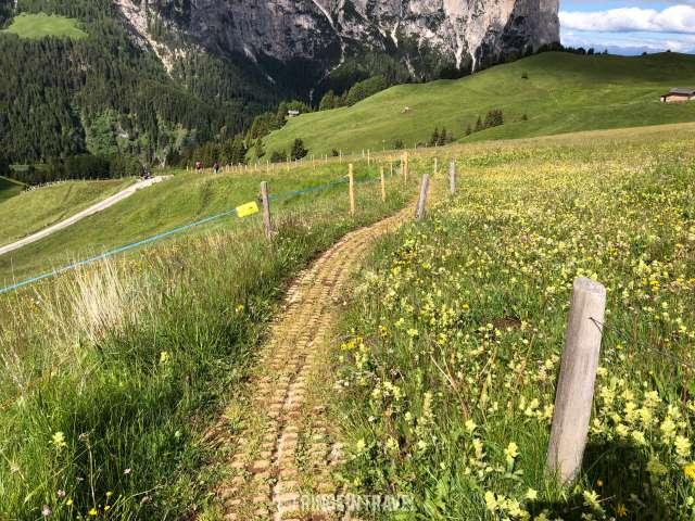 sentiero 10 alpe Siusi