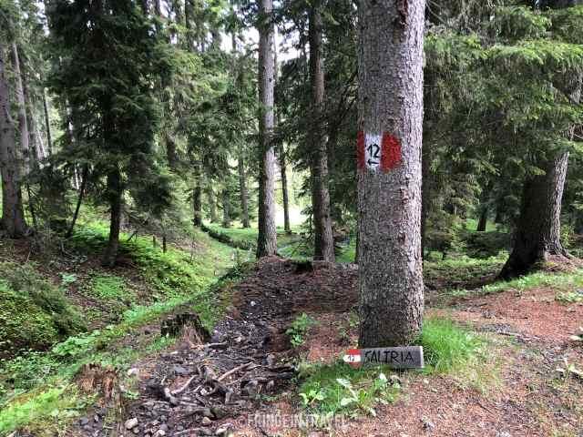 sentiero 12 hans e paula steger percorso15