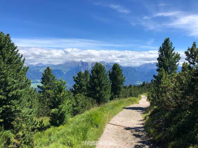 Sentiero Panorama Renon15