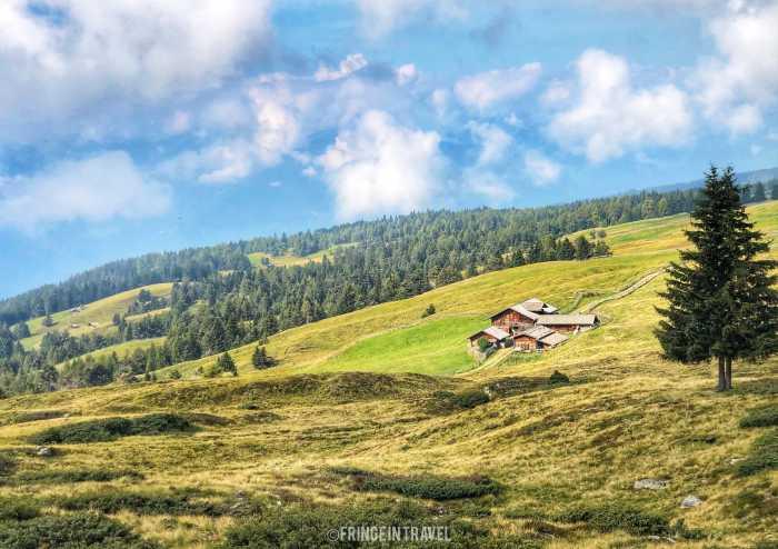 Altopiano Luson Alto Adige6