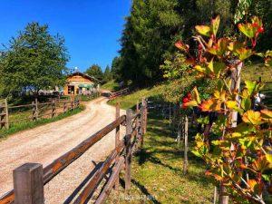Parco Naturale Monte Corno Alto Adige2