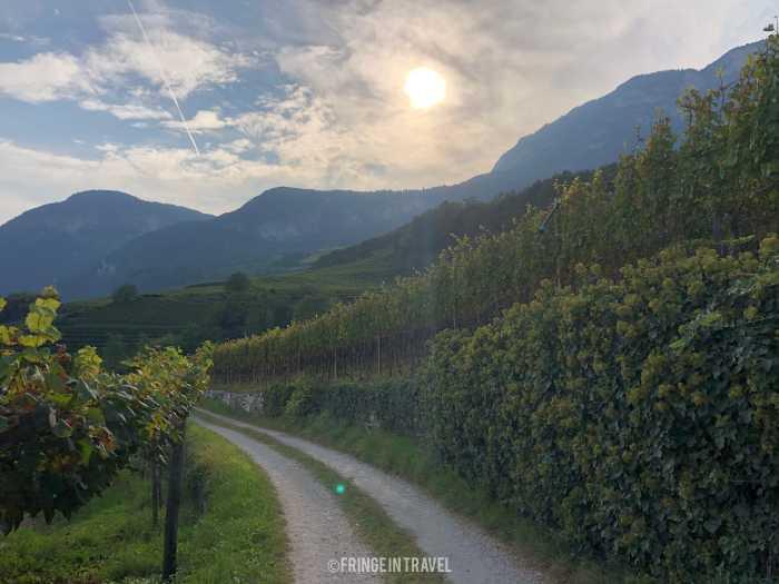 Strada del vino Alto Adige4